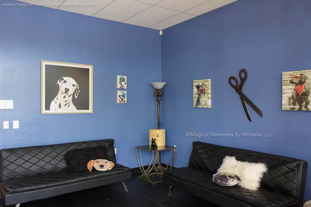 Mesa Pet Salon and Dog Grooming